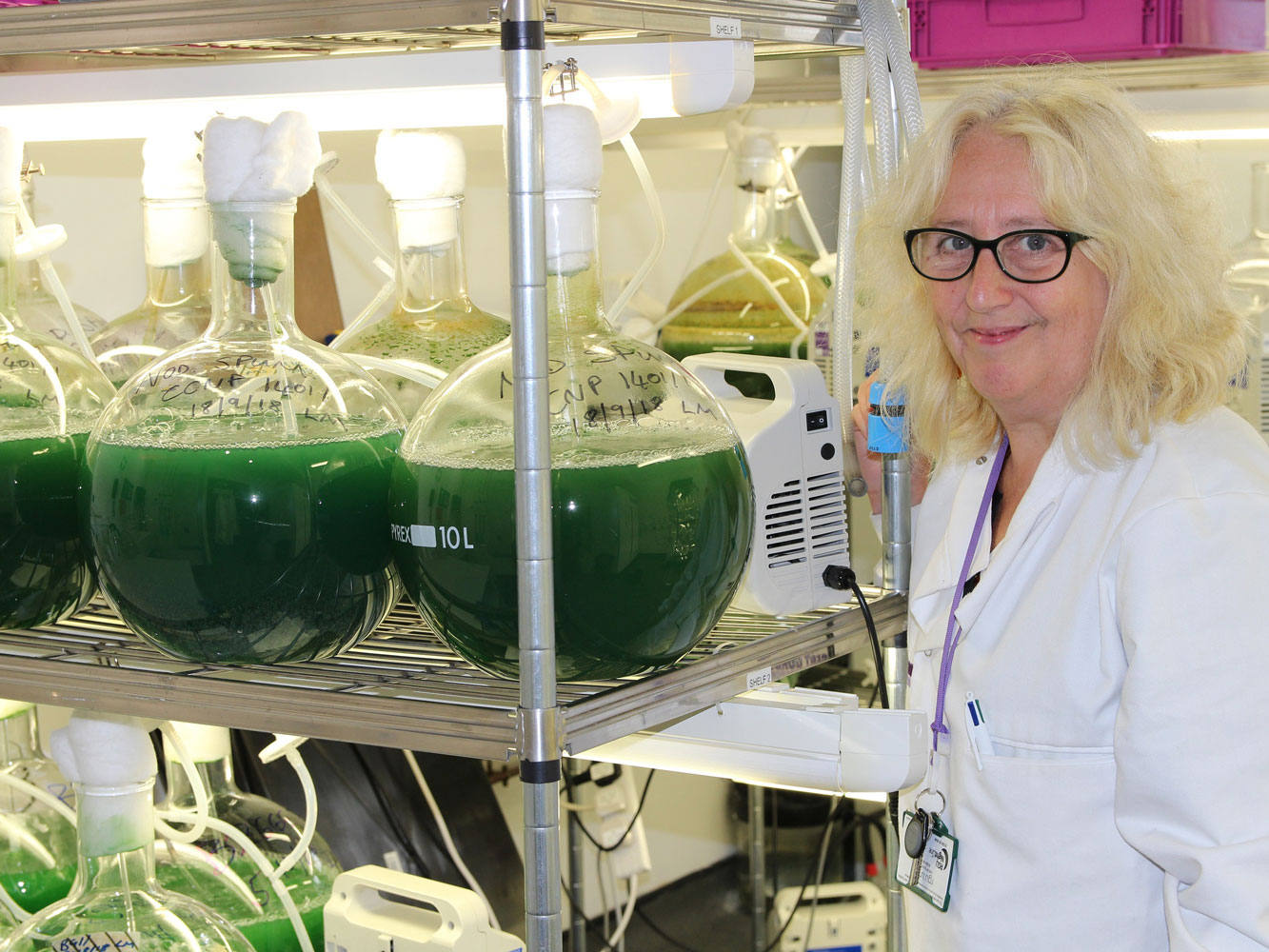 Leading microbiologist brings millions to North-east to protect public health